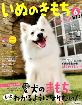 dogs_heart